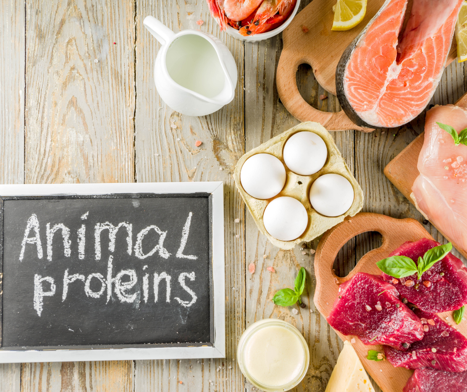 HOW TO CHOOSE THE BEST ANIMAL PROTEINS FOR ENDURANCE ATHLETES